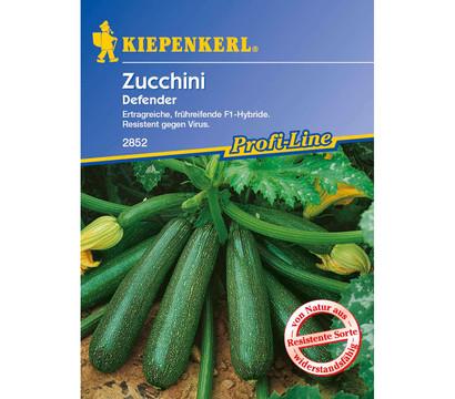 kiepenkerl samen zucchini 39 defender 39 dehner garten center. Black Bedroom Furniture Sets. Home Design Ideas