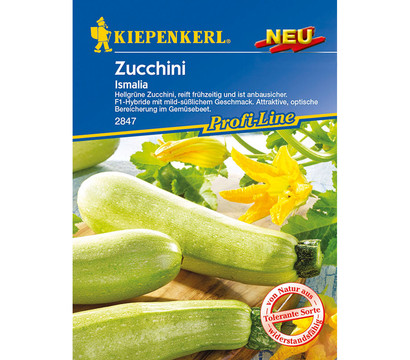 kiepenkerl samen zucchini 39 ismalia 39 dehner garten center. Black Bedroom Furniture Sets. Home Design Ideas