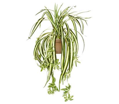 Kunstpflanze Grünlilie weiss-grün, 45 cm