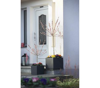 Kunststoff Blumenkübel Kubus, anthrazit, eckig : Dehner Garten Center