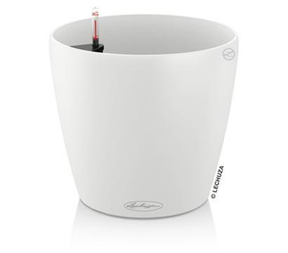 LECHUZA® CLASSICO Color, All-in-One Set, Ø 18 cm