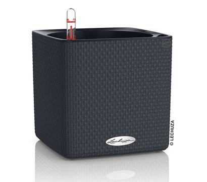 lechuza cube color all in one set eckig 16 x 16 x 16 cm dehner garten center. Black Bedroom Furniture Sets. Home Design Ideas
