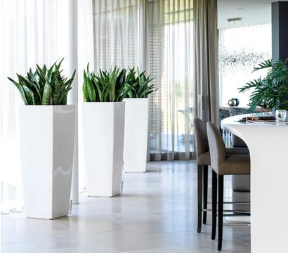 lechuza cubico alto premium 40 all in one set dehner garten center. Black Bedroom Furniture Sets. Home Design Ideas