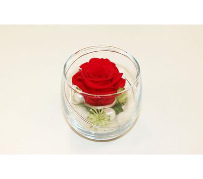 Longlife-Rose im Glas