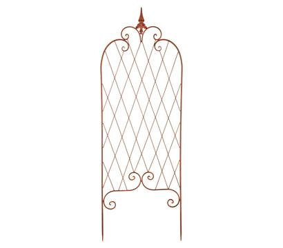 pin kletterer f r rankgitter on pinterest. Black Bedroom Furniture Sets. Home Design Ideas
