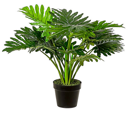 Mica Kunstpflanze Philodendron