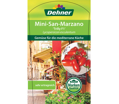 mini san marzano tomate 39 trilly 39 dehner garten center. Black Bedroom Furniture Sets. Home Design Ideas