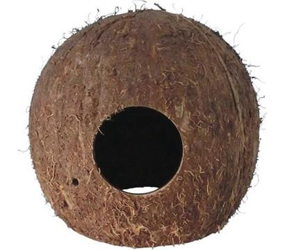 Orbit Kokosnuss Höhle, medium