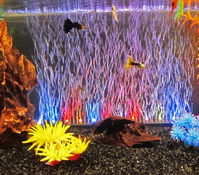 orbit led luftvorhang 34cm aquarium deko dehner garten center. Black Bedroom Furniture Sets. Home Design Ideas