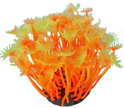 Orbit Smiling Coral, Aquariumdeko, orange