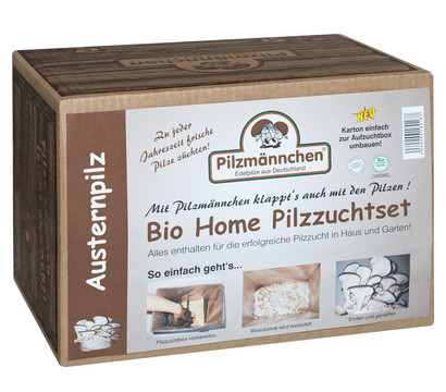 Pilzmännchen Bio Pilzzuchtset Austernpilz