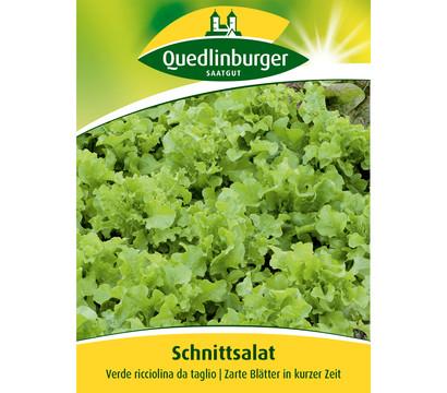 Quedlinberger Samen Schnittsalat 'Verde ricciolina da taglio'