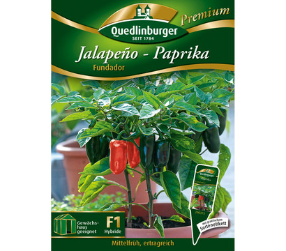 quedlinburger jalapeno paprika 39 fundador 39 dehner garten. Black Bedroom Furniture Sets. Home Design Ideas