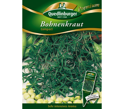 Quedlinburger Samen Bohnenkraut 'Compact'