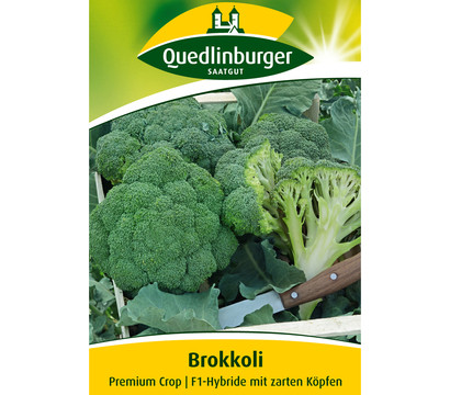 Quedlinburger Samen Brokkoli 'Premium Crop'