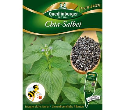 Quedlinburger Samen Chia-Salbei