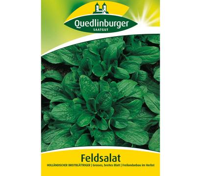 Quedlinburger Samen Feldsalat 'Holländischer Breitblättriger'