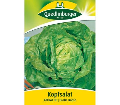 Quedlinburger Samen Kopfsalat 'Attractie'