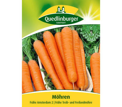 Quedlinburger Samen Möhren 'Frühe Amsterdam 2'