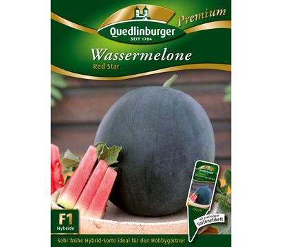 Quedlinburger Samen Wassermelone 'Red Star'