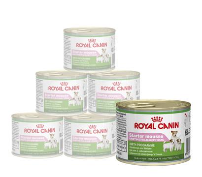 ROYAL CANIN® Nassfutter Starter Mousse Mother & Babydog, 12 x 195g