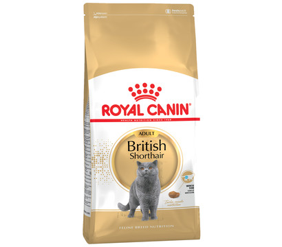 Royal Canin Trockenfutter British Shorthair Adult