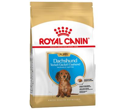 ROYAL CANIN® Trockenfutter Dachshund Puppy