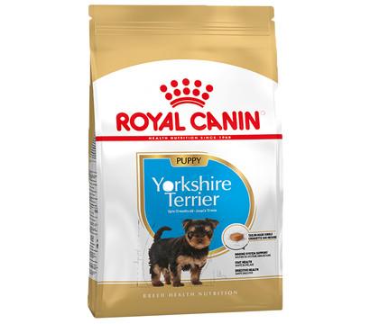 ROYAL CANIN® Trockenfutter Yorkshire Terrier Puppy