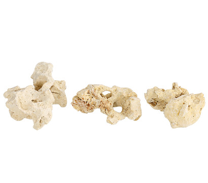 Sansibar Rock, 7-10 cm, 3er-Set