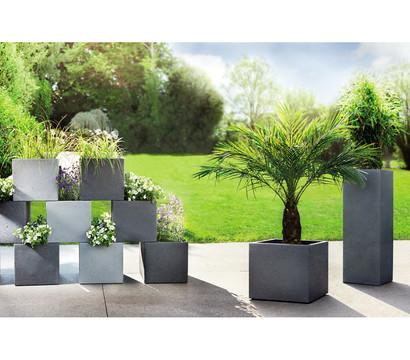 Frisch Scheurich Kunststoff-Pflanztopf, eckig, grau : Dehner Garten Center ZJ08