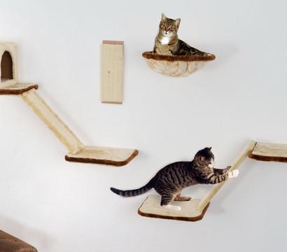 silvio design katzen kletterwand 8 teilig dehner garten center. Black Bedroom Furniture Sets. Home Design Ideas