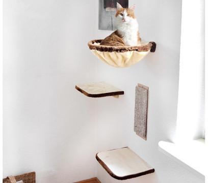 silvio design kletterwand f r katzen 4 teilig dehner. Black Bedroom Furniture Sets. Home Design Ideas