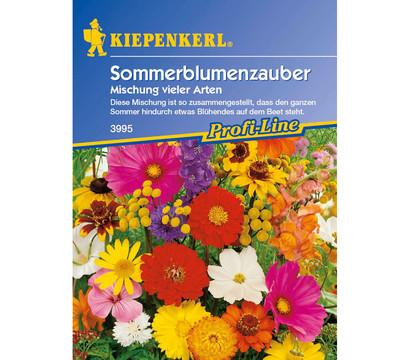 Sommerblumenzauber Mix, Saatgut von Kiepenkerl