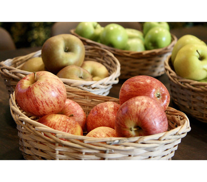 Spalieräpfel in Sorten