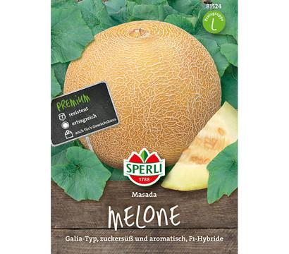SPERLI Samen Melone 'Masada'
