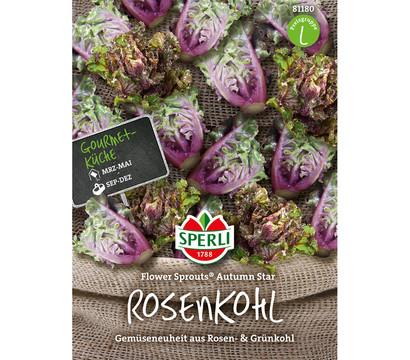 SPERLI Samen Rosenkohl 'Flower Sprouts Autumn Star'
