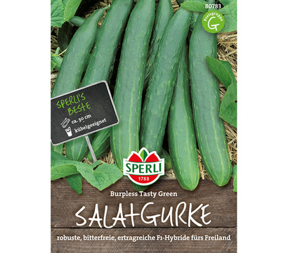 SPERLI Samen Salatgurke 'Burpless Tasty Green'