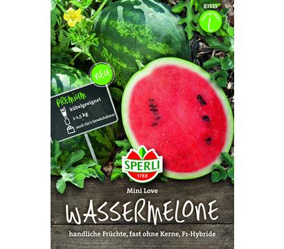 SPERLI Samen Wassermelone 'Mini Love'