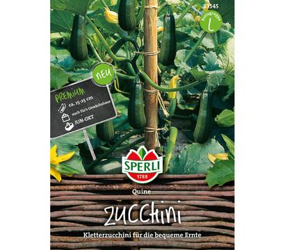 SPERLI Samen Zucchini 'Quine'