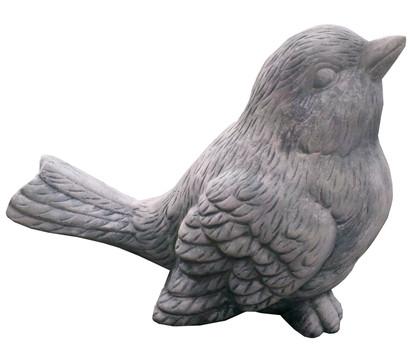 Stein-Vogel hoch schauend