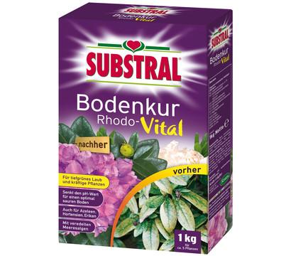 Substral® Bodenkur Rhodo-Vital, 1 kg