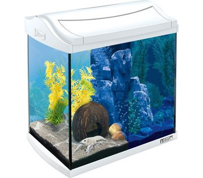 tetra aquaart led aquarium set 30 liter dehner garten center. Black Bedroom Furniture Sets. Home Design Ideas