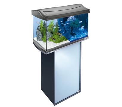 tetra aquaart led aquarium set 60 liter dehner garten. Black Bedroom Furniture Sets. Home Design Ideas
