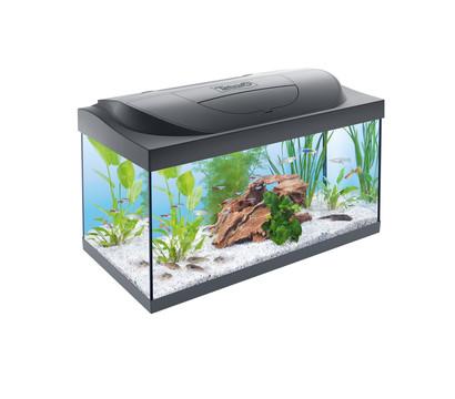 Tetra Aquarium-Set Starter Line LED 54L
