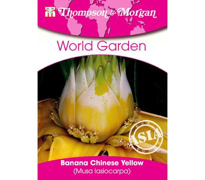 Thompson & Morgan Samen Banana Chinese Yellow