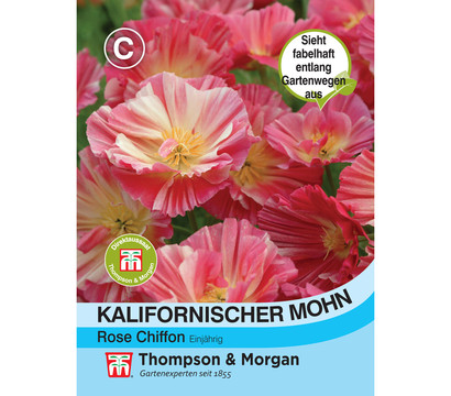 Thompson & Morgan Samen Kalifornischer Mohn 'Rose Chiffon'