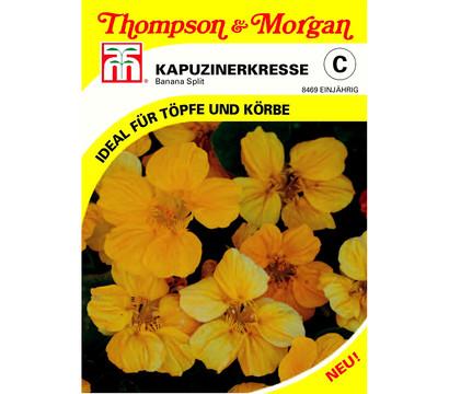 Thompson & Morgan Samen Kapuzinerkresse 'Banana Split'
