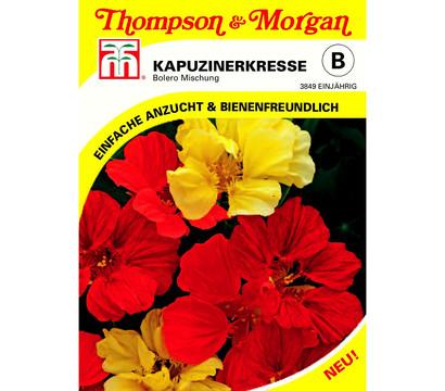 Thompson & Morgan Samen Kapuzinerkresse 'Bolero Mischung'