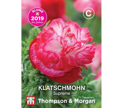 Thompson & Morgan Samen Klatschmohn 'Supreme'