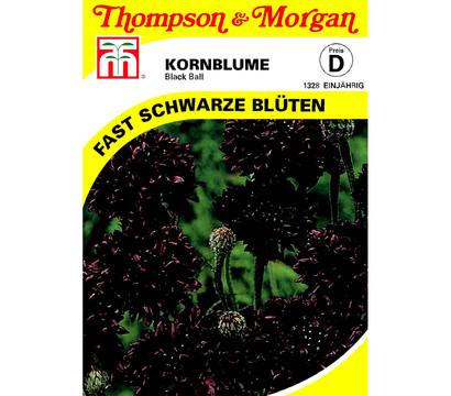 Thompson & Morgan Samen Kornblume 'Black Ball'